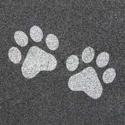 Трафарет «Медвежьи следы» купить